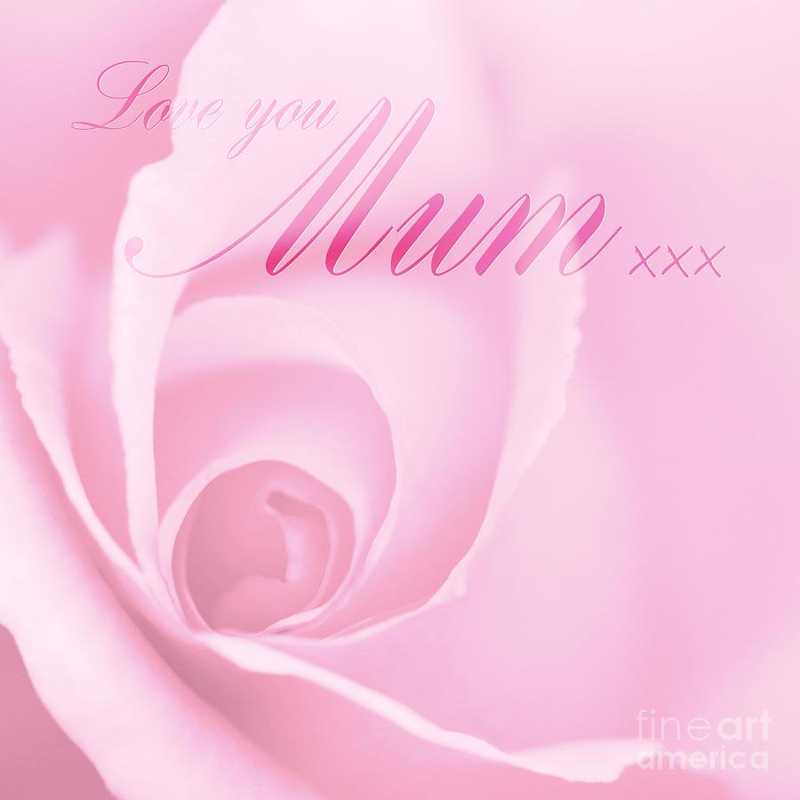 Love You Mum Photograph - Love You Mum Pink Rose by Natalie Kinnear