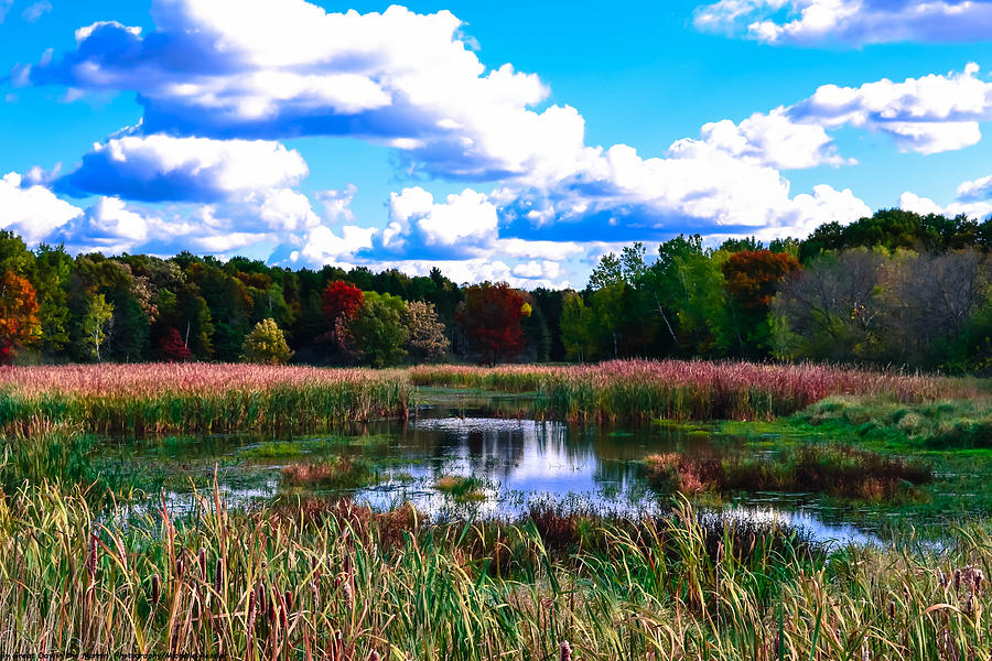 Fall Colors Photograph - Lovely Day by Michelle and John Ressler