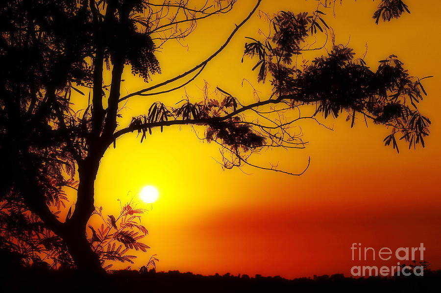 Sunset Photograph - Lovely Sunset by George Paris