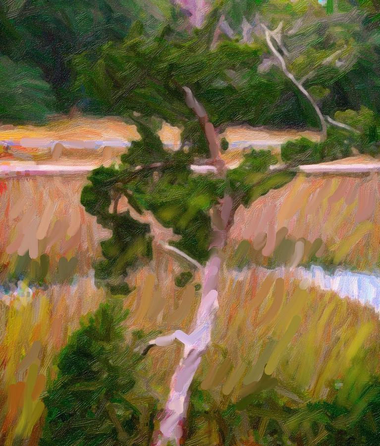 Low Country Tree by Carol Kinkead
