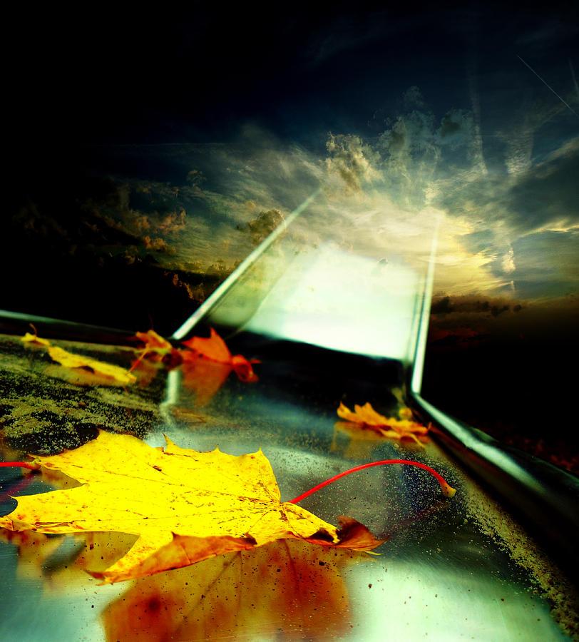 Abstract Photograph - Low Season by Florin Birjoveanu