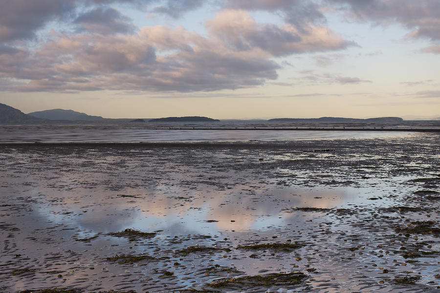 Sandy Point Photograph - Low Tide Reflections by Priya Ghose