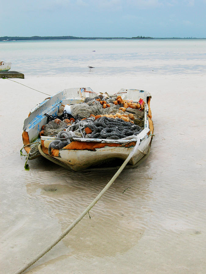 Boat Photograph - Low Tide by Sarah-jane Laubscher