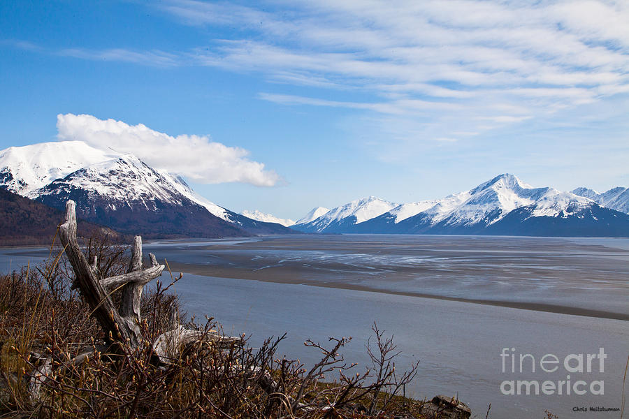 Alaska Photograph - Low Tide Turnagain Arm by Chris Heitstuman