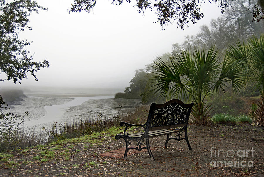 Lowcountry Fog Photograph