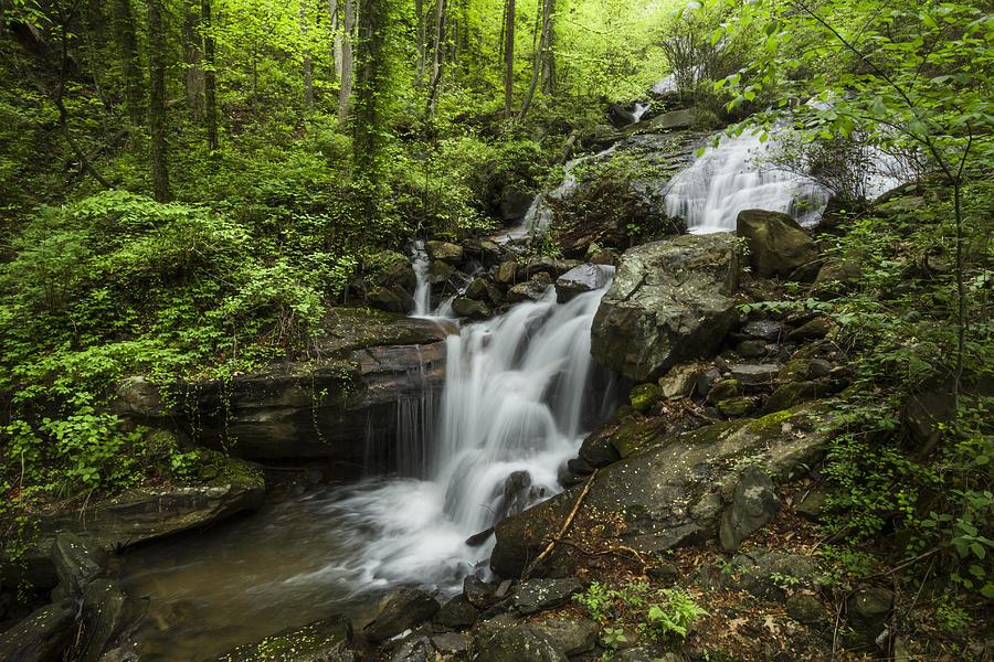 Appalachia Photograph - Lower Amicalola Falls by Debra and Dave Vanderlaan