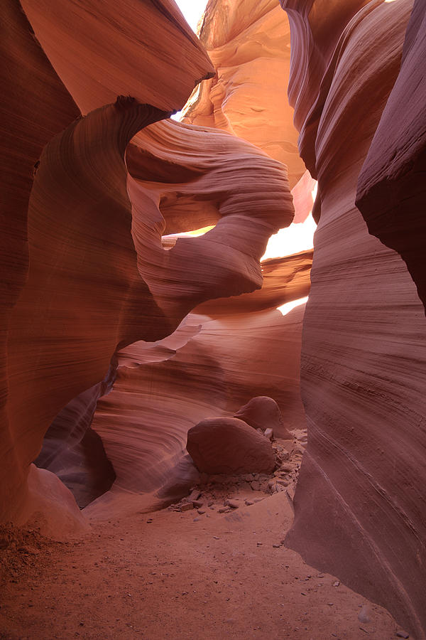Lower Antelope Canyon Photograph - Lower Antelope Canyon by Mike Herdering