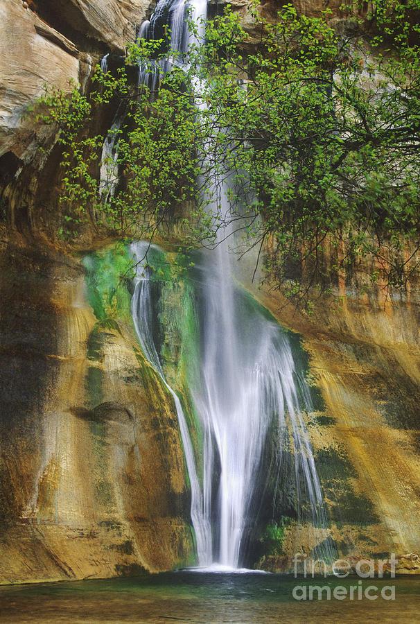 Lower Calf Creek Falls, Grand Staircase-Escalante National