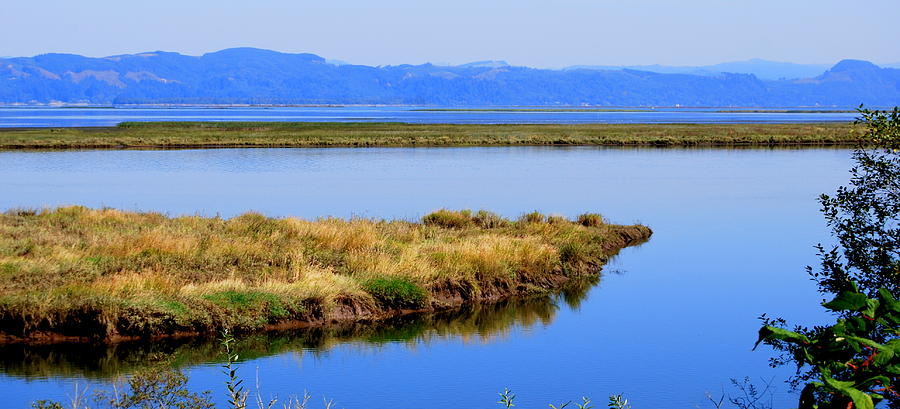 Columbia River Photograph - Lower Columbia Panorama II by Mamie Gunning