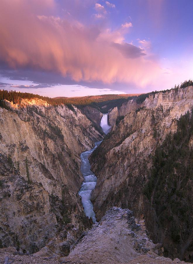 Lower Yellowstone Falls  Wyoming Photograph by Tim Fitzharris