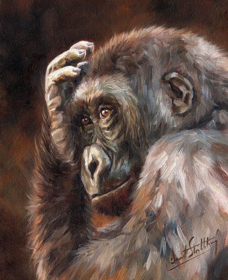 Gorilla Painting - Lowland Gorilla by David Stribbling