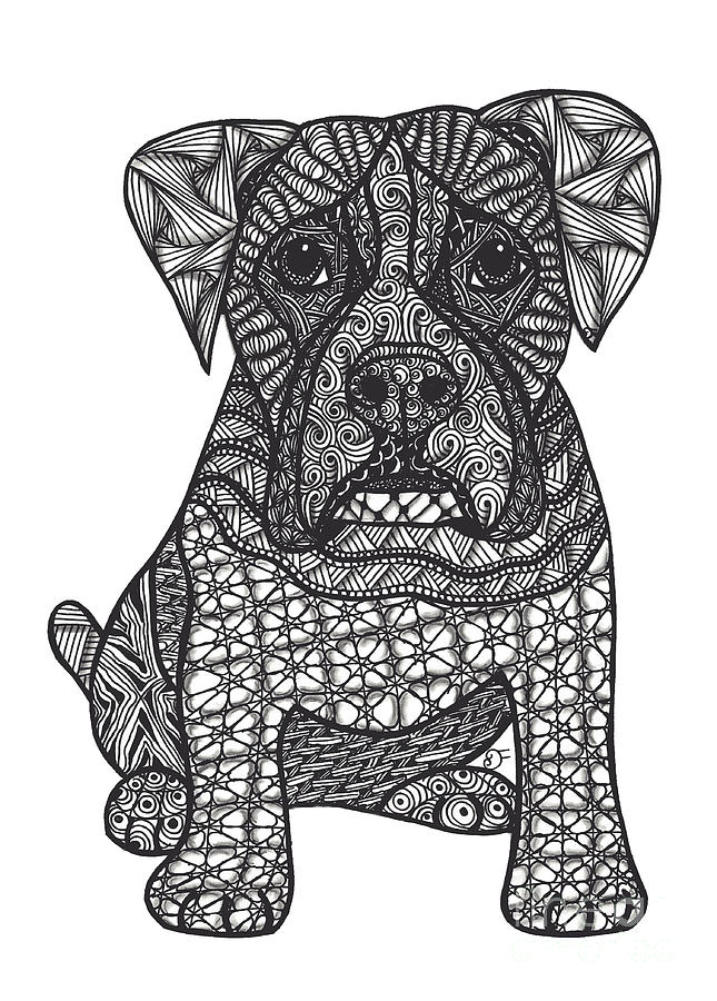Boxer Drawing - Loyalty- Boxer Dog by Dianne Ferrer
