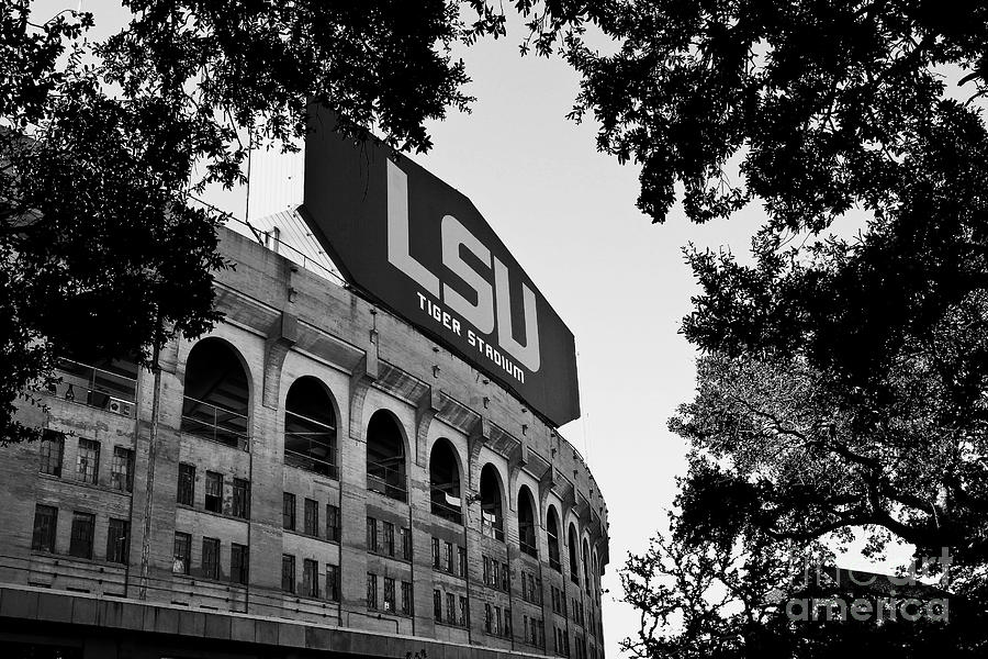 Fighting Tigers Photograph - LSU Through the Oaks by Scott Pellegrin