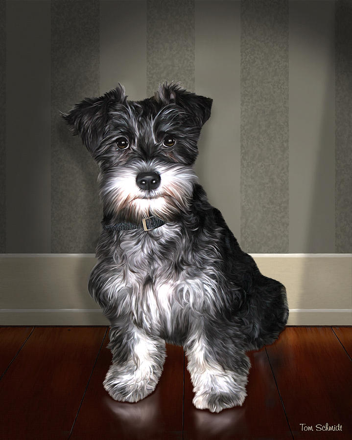 Oil Portrait Of Schnauzer Painting - Lucy Lovd Alot by Tom Schmidt