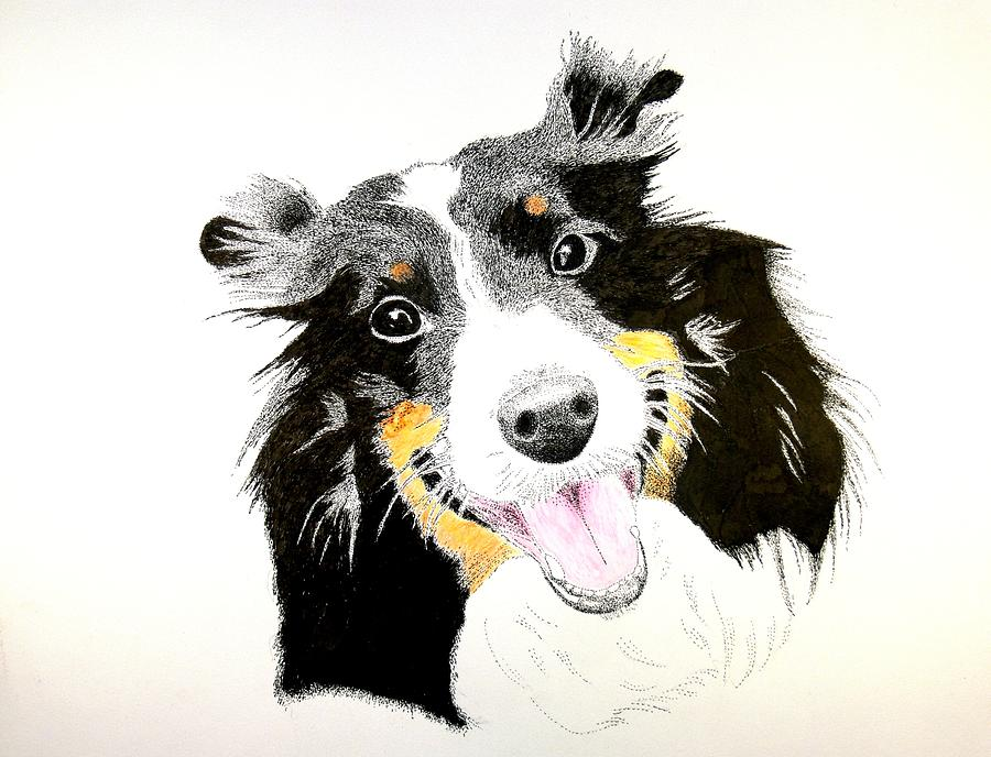 Dog Drawing - Lucys Portrait by Richard Burrows