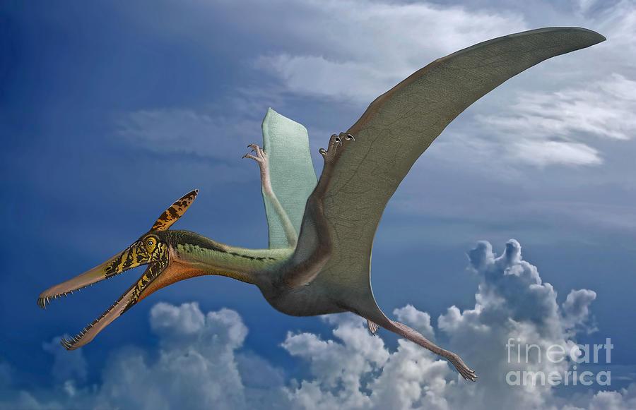 Ludodactylus Sibbicki, A Pterosaur Digital Art by Sergey ...