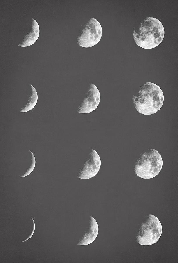 Moon Digital Art - Lunar Phases by Zapista Zapista