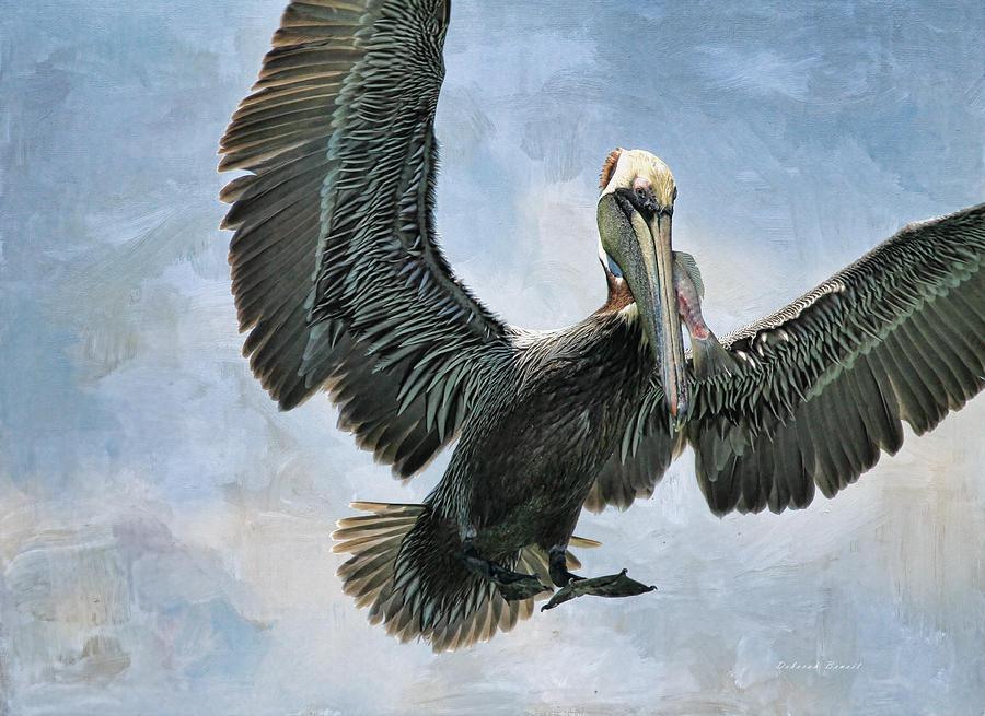 Pelican Photograph - Lunch Is Served by Deborah Benoit