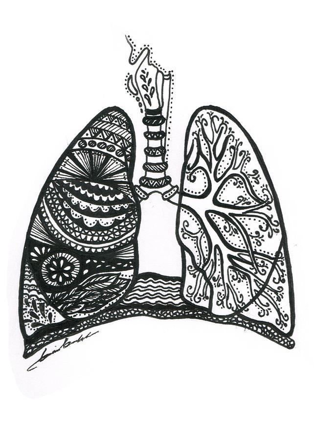 lungs drawing by daria brekke