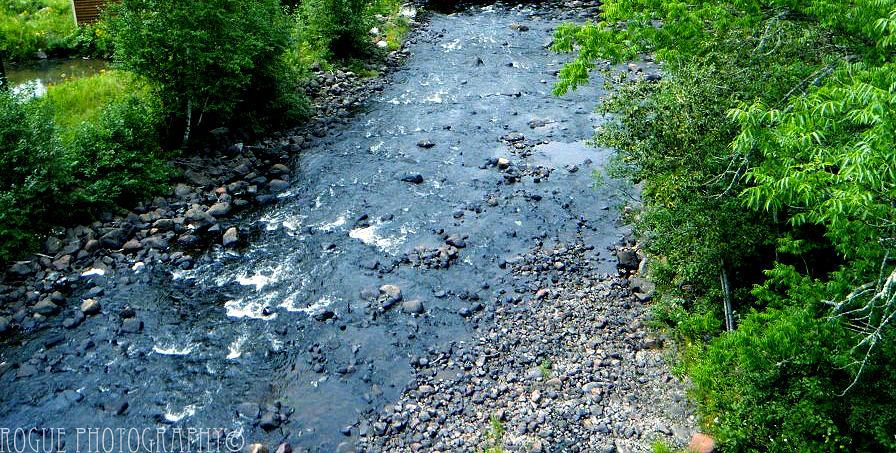 River Photograph - Lutsen River by Meghan Ziegel
