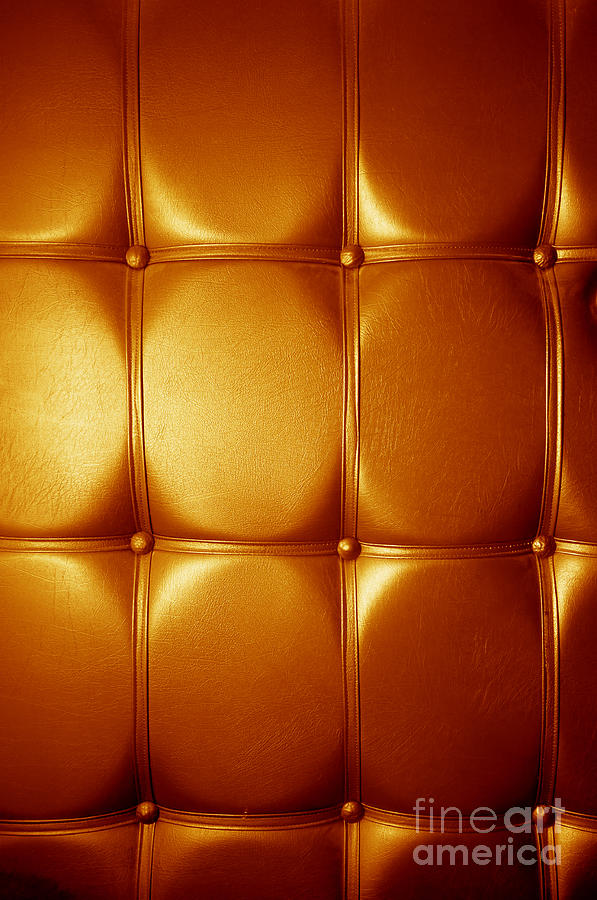 Leather Photograph - Luxury Genuine Leather. Golden Color by Michal Bednarek