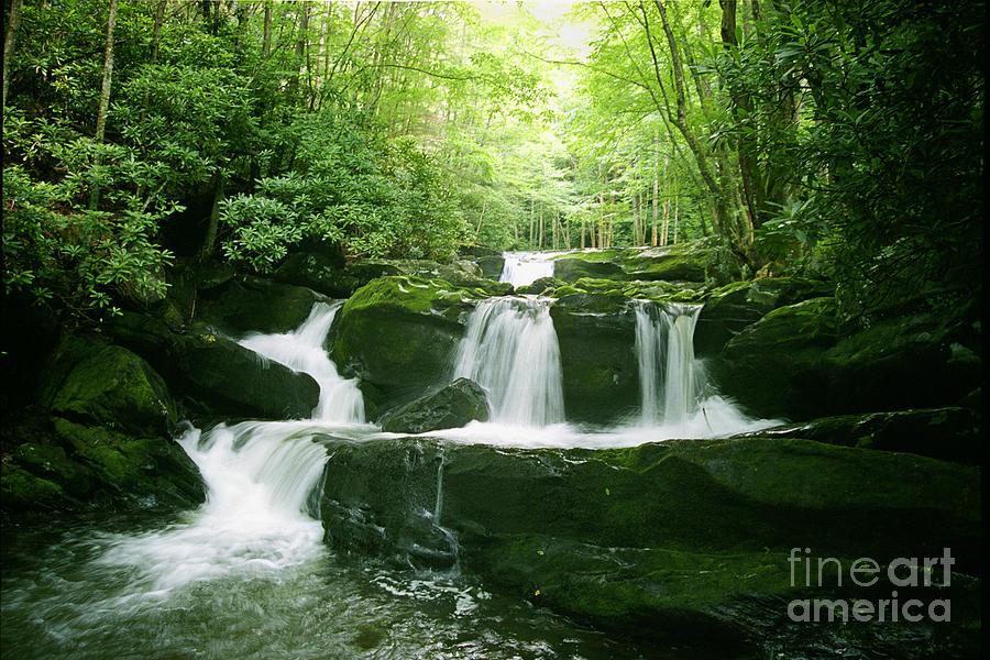 Lynn Camp Prong Falls by Teri Brown