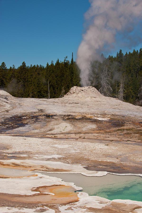 Lyon Geyser Group--yellowstone National Photograph by Ed Reschke