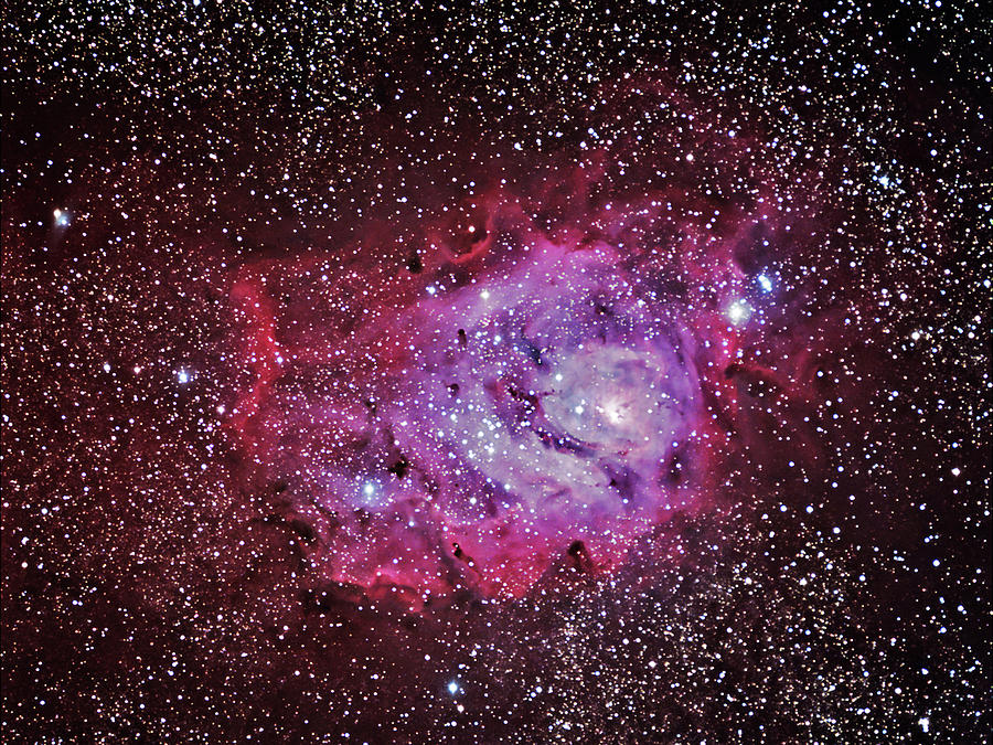 M8--the Lagoon Nebula Photograph by A. V. Ley