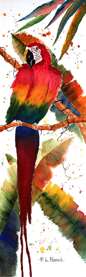 Macaw Painting - Macaw Feathers by Patricia Novack