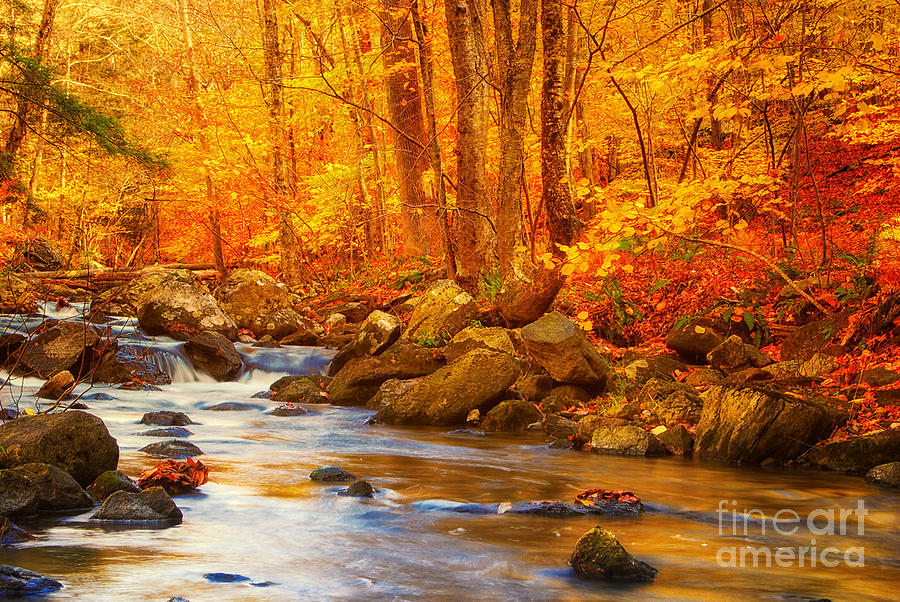 Macedonia Brook State Park Autumn Colors Photograph By