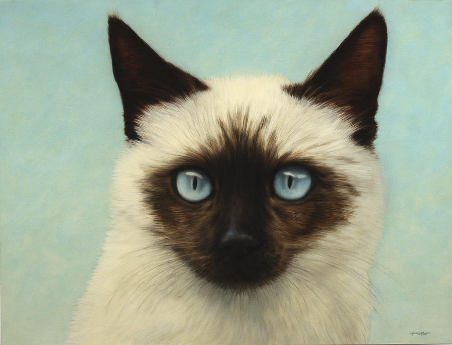 Cat Painting - Machka by James W Johnson