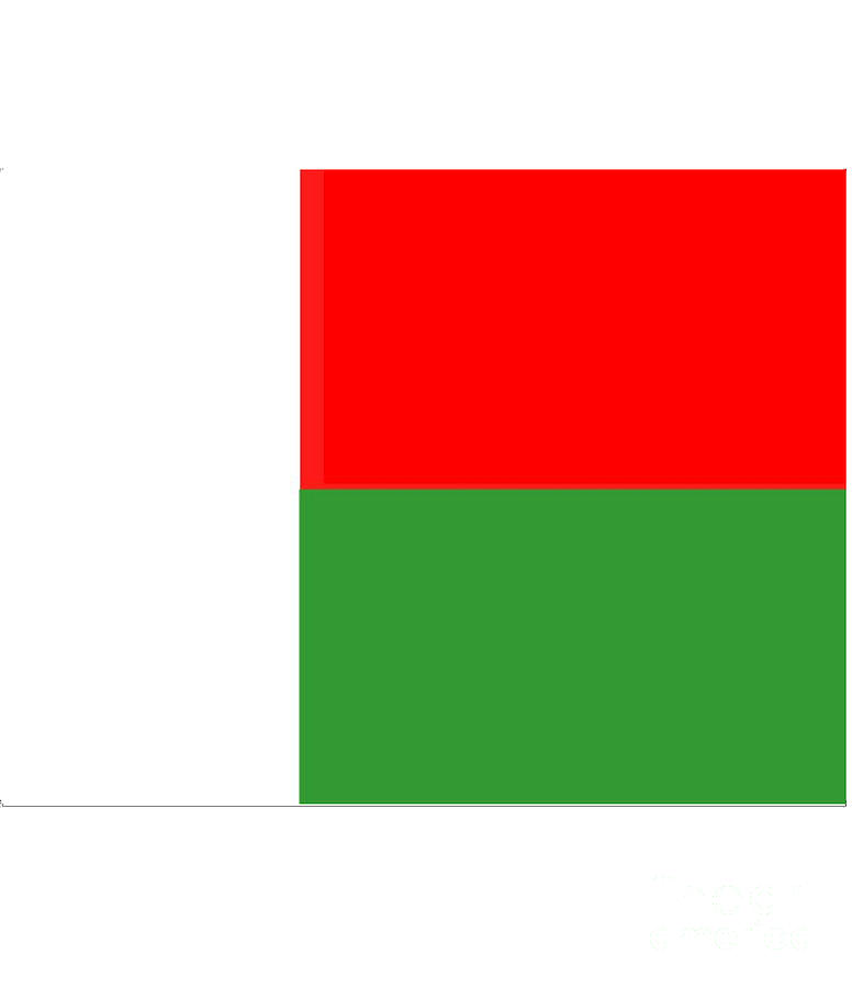 Madagascar Flag Digital Art - Madagascar Flag by Frederick Holiday