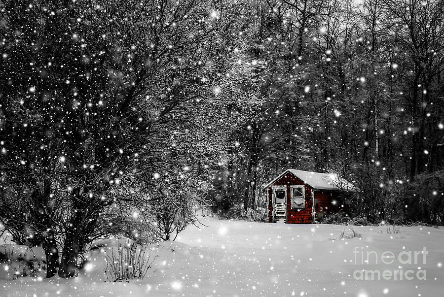 Winter Photograph - Made In Maine Winter  by Brenda Giasson