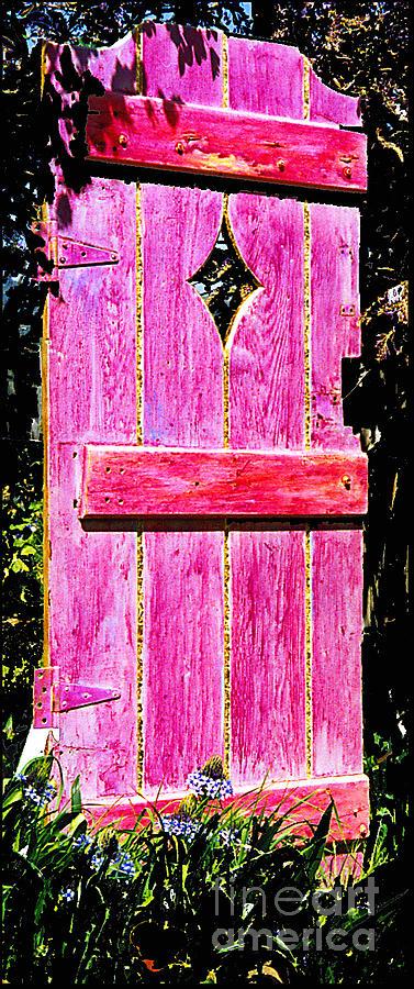 Painted Door Sculpture - Magenta Painted Door In Garden  by Asha Carolyn Young and Daniel Furon