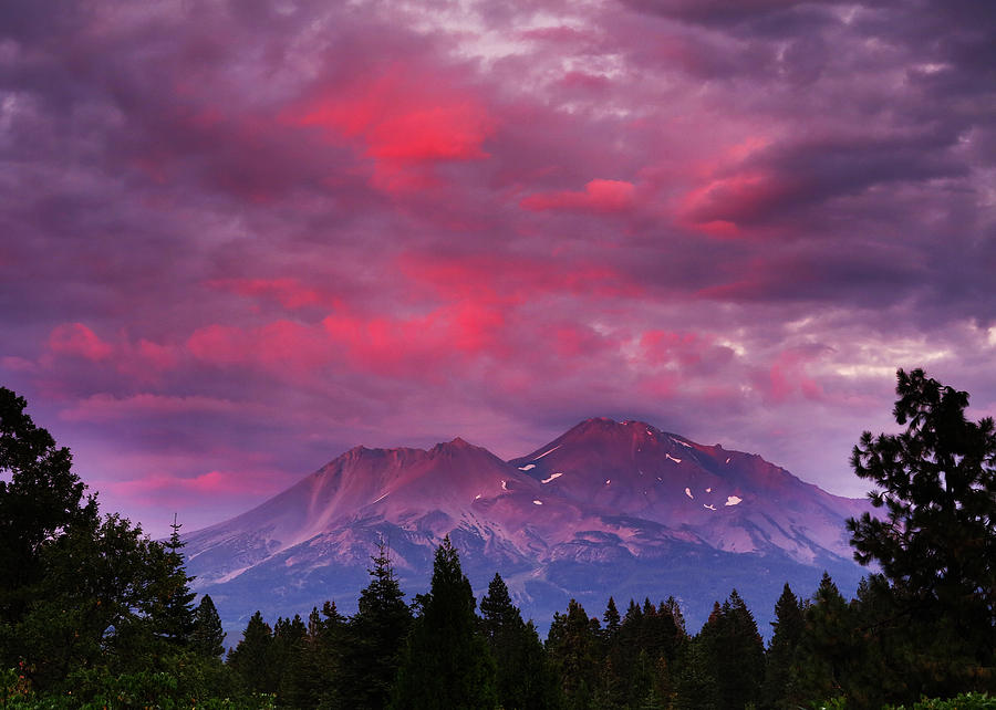 Black And White Photograph - Magenta Sunset Mount Shasta by Jeff Leland
