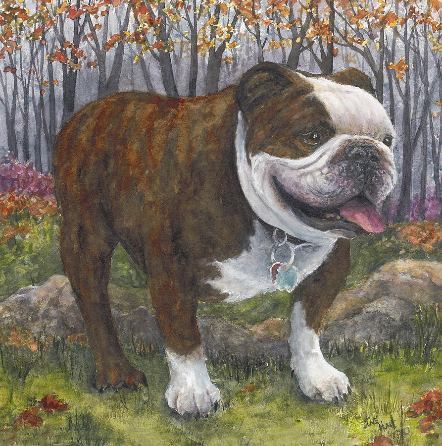 Pet Painting - Maggie by June Hunt