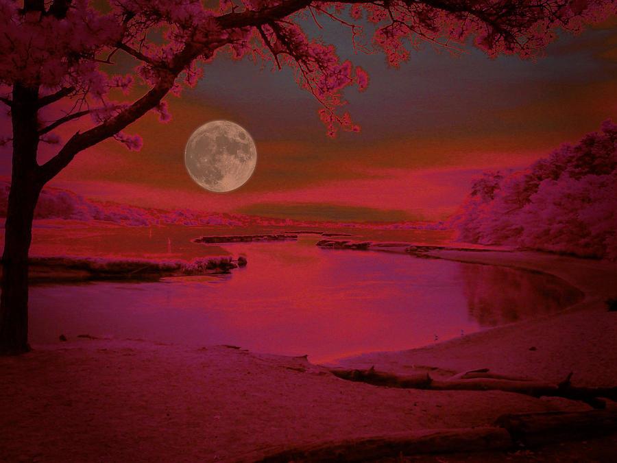 Night Scene Photograph - Magic Dusk by Robert McCubbin