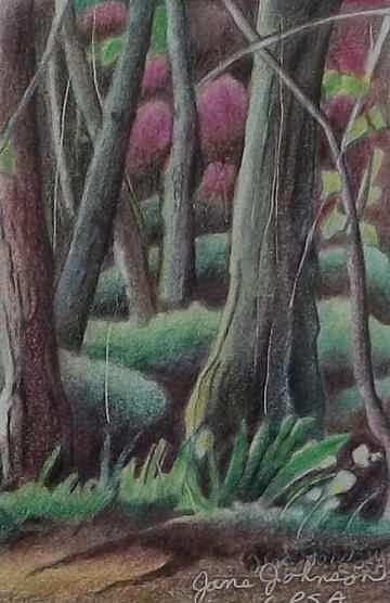 Trees Drawing - Magic Forest by Jane Johnson