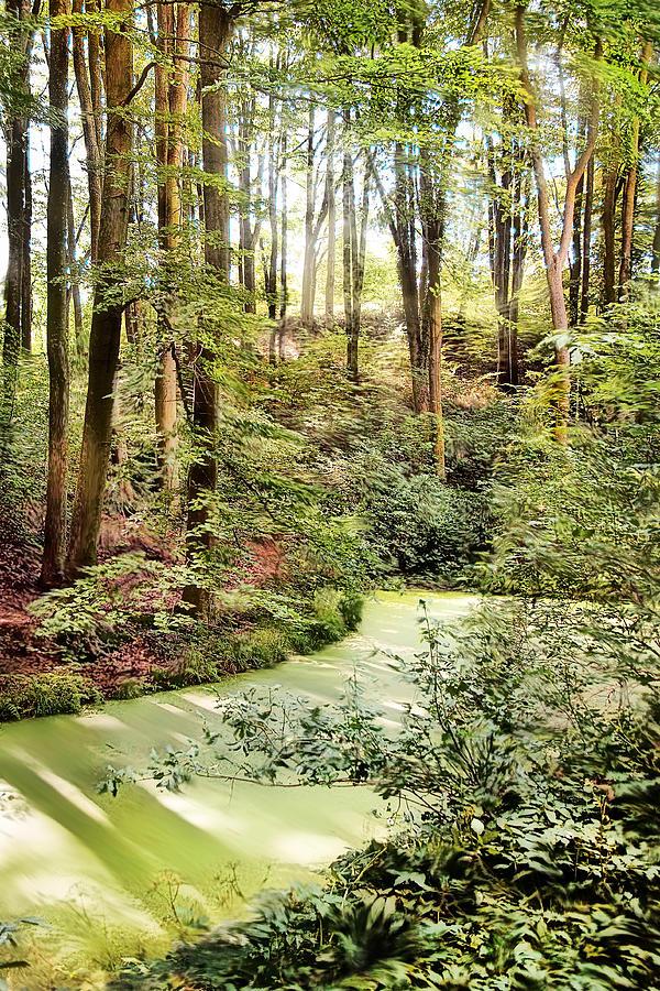 Botanic Gardens Photograph - Magic World Of Botanic Gardens by Danuta Antas Wozniewska