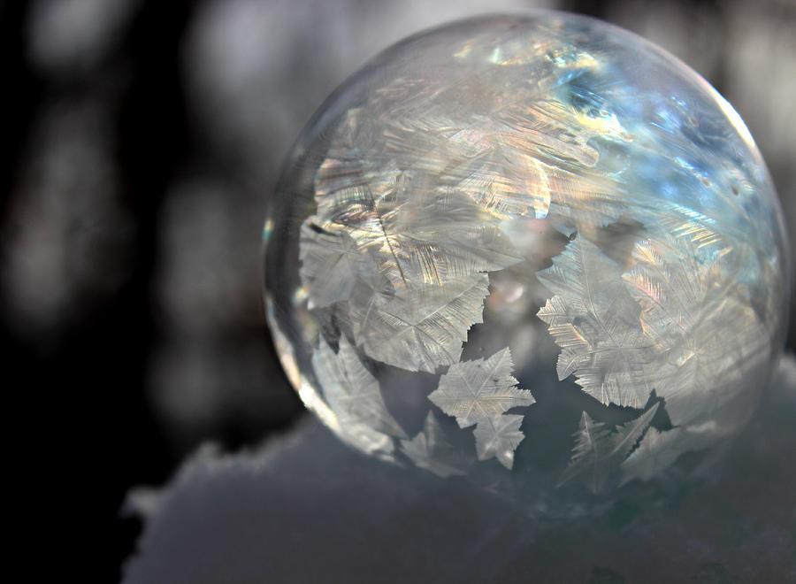Colorful Photograph - Magical Bubble by Candice Trimble