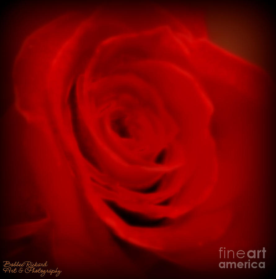 Acrylic Prints Photograph - Magical Rose by Bobbee Rickard