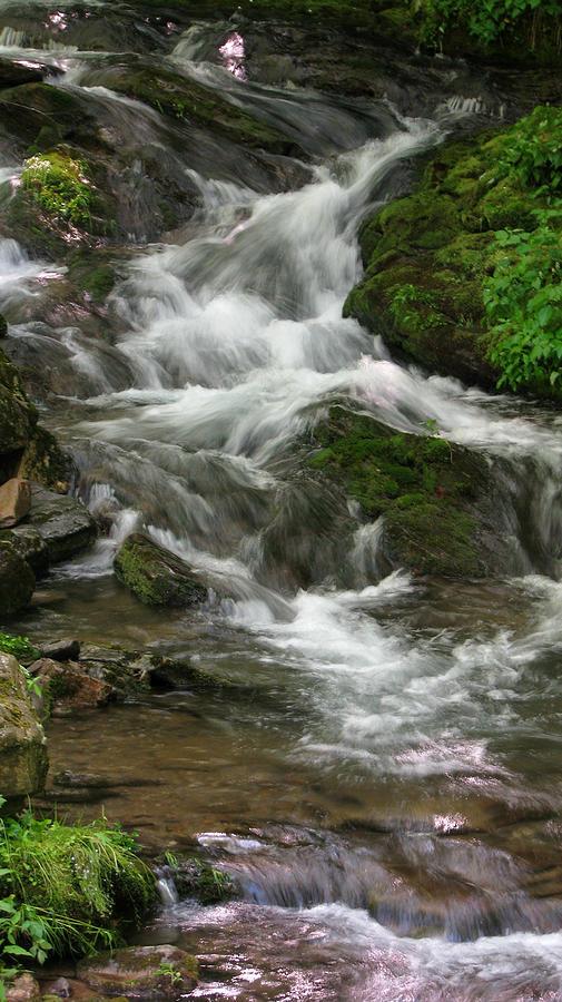 Magical Stream by Jason Denis