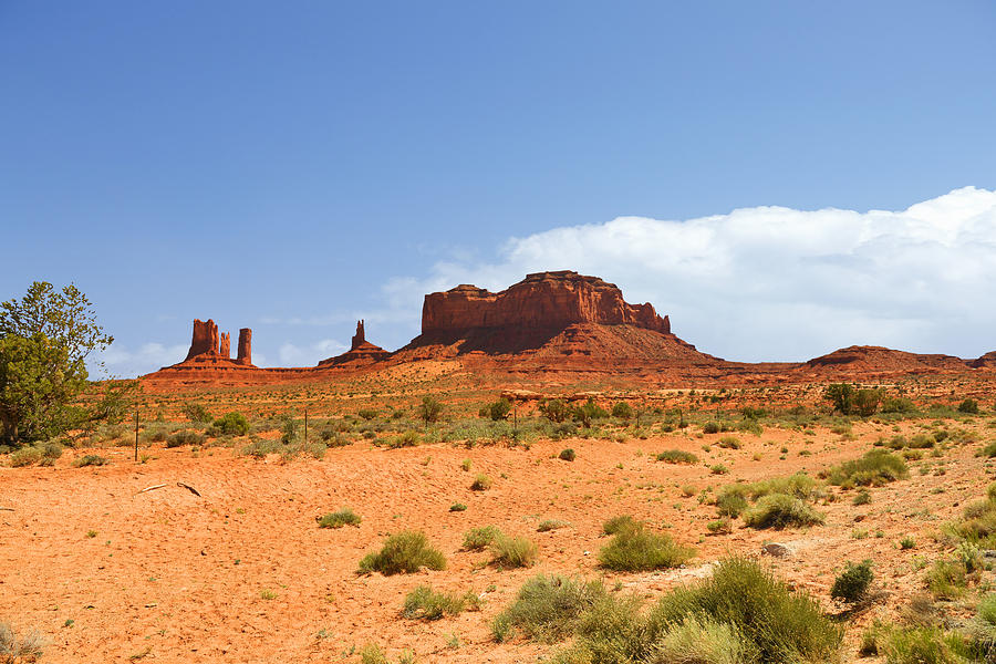 Monument Photograph - Magnificent Monument Valley by Christine Till