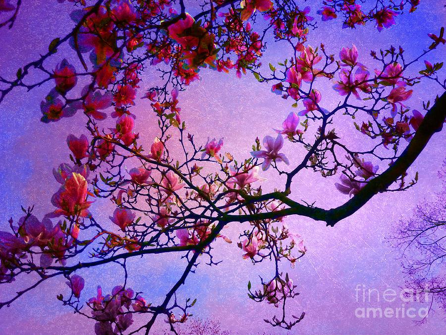 Magnolia Photograph - Magnolia #2 by Angela Bruno