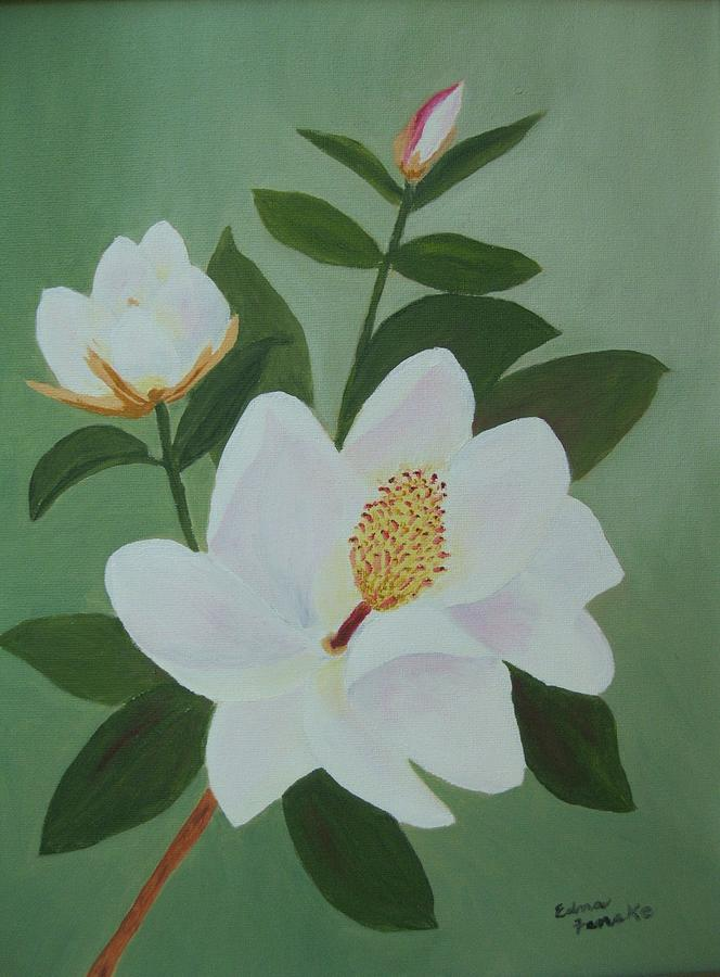 Magnolia Branch Painting by Edna Fenske