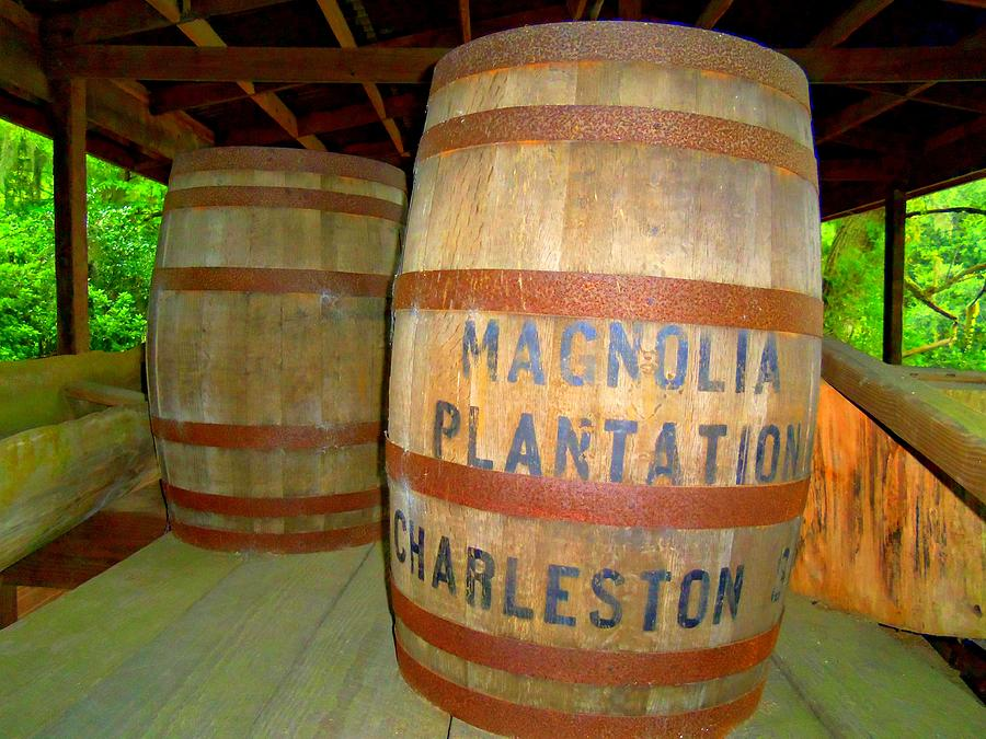 Magnolia Plantation Photograph - Magnolia Brew 2 by Ron Kandt