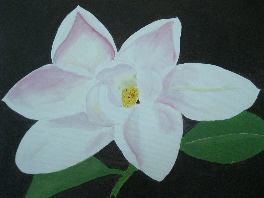 Magnolia Painting by Edna Fenske