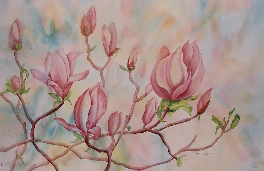 Magnolia Painting - Magnolia by Heather Gallup
