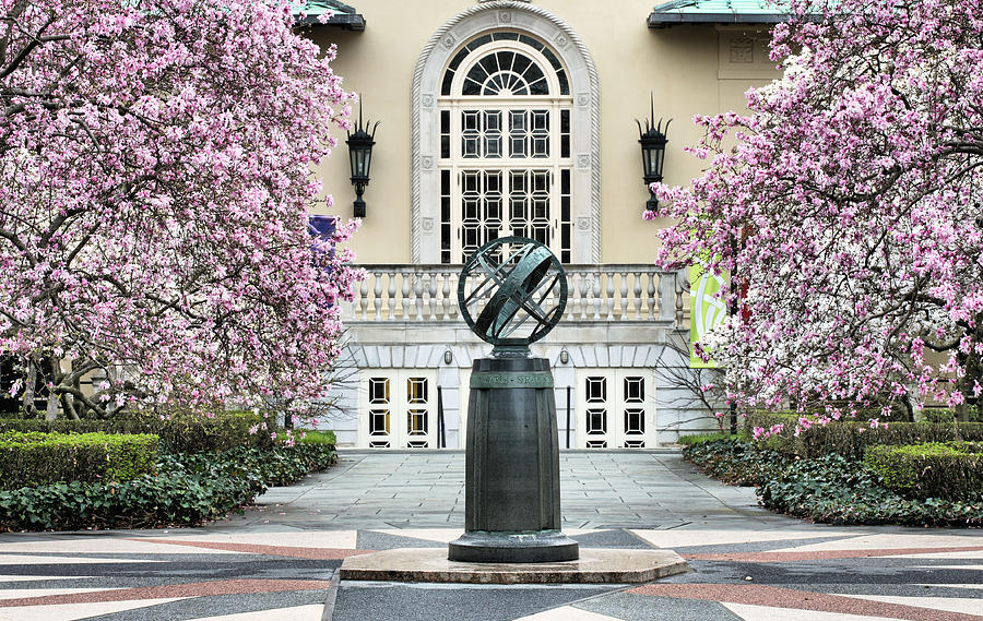 Garden Photograph - Magnolia Plaza by JC Findley