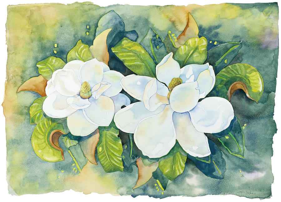 Flowers Painting - Magnolias by Cathy Locke